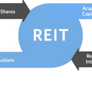 REIT (2016 Updates)